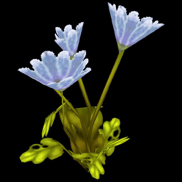 Friedensblume